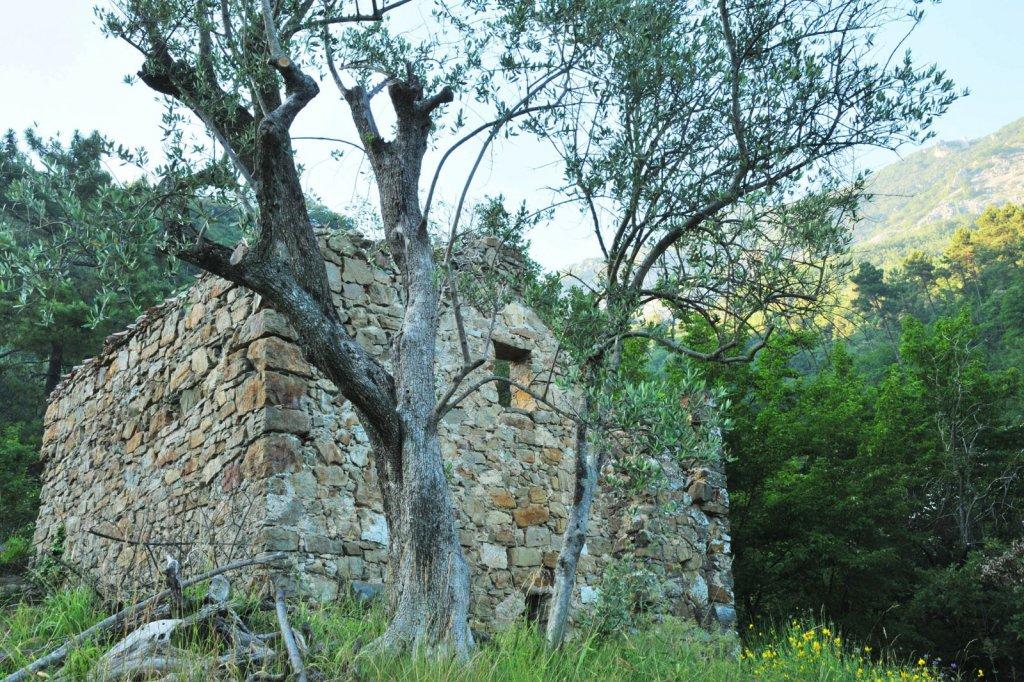 Vente exclusivite castillon terrain agricole de 2840 m2 for Prix des terrains au m2